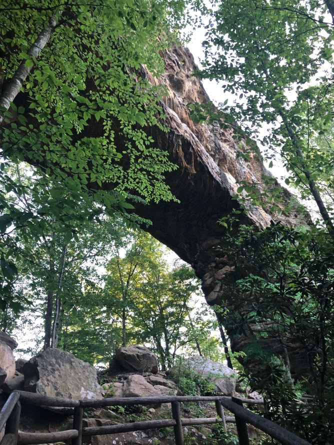 Beneath Natural Bridge. Photo by Curt Whitacre.