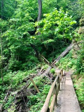 En route to the Needles Eye Staircase at Natural Bridge State Park. Photo by Curt Whitacre.