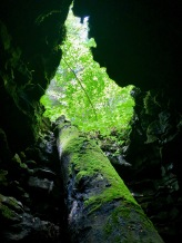 Beneath Henson's Arch near the Whittleton Campground in Red River Gorge. Photo by Curt Whitacre.